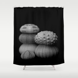 Sea Urchins... Shower Curtain