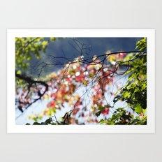 Branches Over Bokeh Art Print