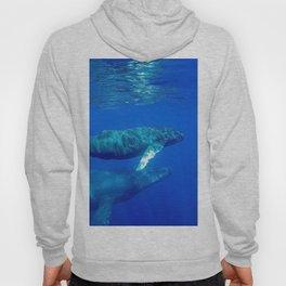 Underwater Humpbacks 7 Hoody