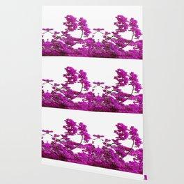 LILAC PURPLE BOUGAINVILLEA VINES CLIMBING ON WHITE Wallpaper