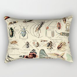 Vintage Insect Identification Chart // Arthropodes by Adolphe Millot XL 19th Century Science Artwork Rectangular Pillow