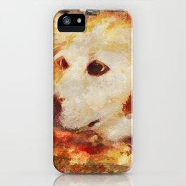 Bree iPhone Case