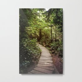 trail to Cape Flattery Metal Print