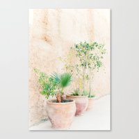 plants Canvas Prints featuring Plants by Anouschka Rokebrand