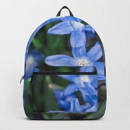Easter Snow Glories Backpack