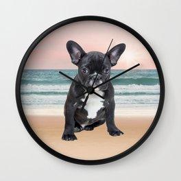 Cute French Bulldog Beach Sun Water Wall Clock