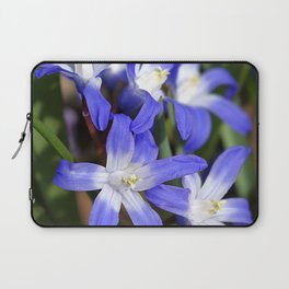 Early Spring Blue - Chionodoxa Laptop Sleeve