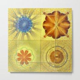 Didactic Rainbow Flower  ID:16165-120332-39891 Metal Print