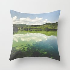 Perfect World Throw Pillow