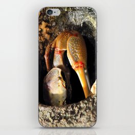 Why So Crabby? iPhone Skin