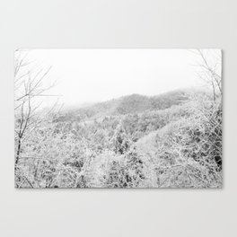 Carolina Winter Canvas Print