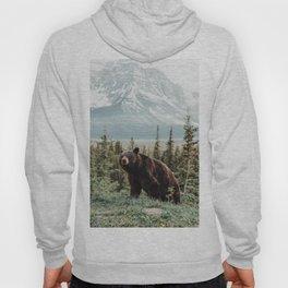 Bear Bear Hoody