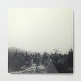 Gray Day. Metal Print