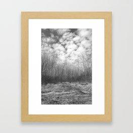 Fragile Landscape Framed Art Print