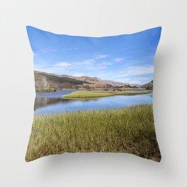 Loch Earn Reeds Throw Pillow