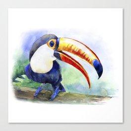 Toucan watercolor illustration, aquarelle art bird Canvas Print