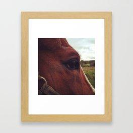 Absadz Framed Art Print