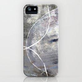 Canvas No. 1 iPhone Case