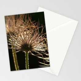 withered blossoms of pasque flowers Stationery Cards