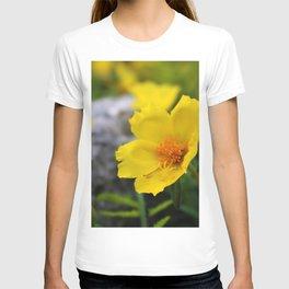 Yellow Buttercup Flower T-shirt