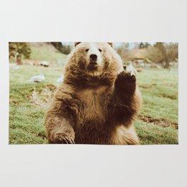 Hi Bear Rug