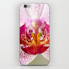 Pink points orchid 35 iPhone & iPod Skin