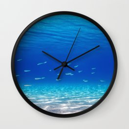 School of Fish Swimming over Sand Bottom in the Tropical Sea Wall Clock