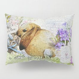 Easter Time Pillow Sham