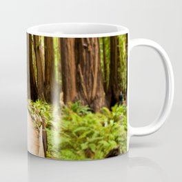 Path in Muir Woods Coffee Mug