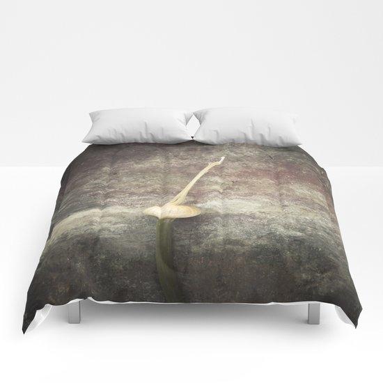 Allium Bud Comforters