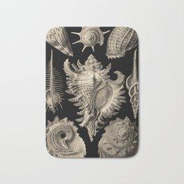 Ernst Haeckel Prosobranchia Sea Shells Bath Mat