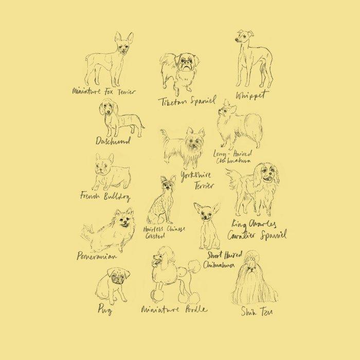 Dog Typology Comforters