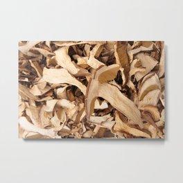 Dried mushrooms Metal Print