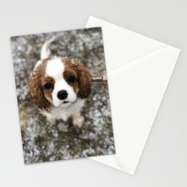 Cavalier Snow Angel Stationery Cards