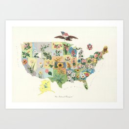 Vintage US State Flower Map (1911) Art Print