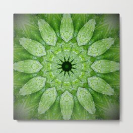 Green Mandala, heart chakra, nature sacred geometry rain drops leaves Metal Print