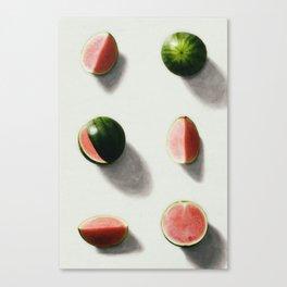 fruit 14 Canvas Print