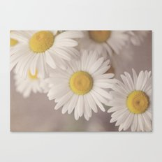 Quaint Canvas Print