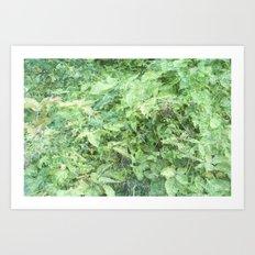 927 Art Print