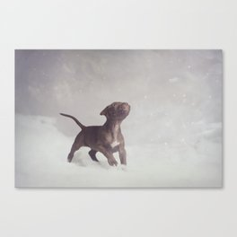 Playtime in the Snow Canvas Print