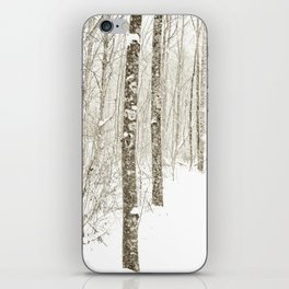 Wintry Mix iPhone Skin