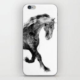 Horse (Friesian Colt) iPhone Skin