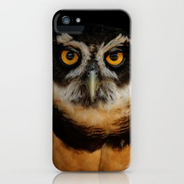 Trading Glances with a Spectacled Owl iPhone Case