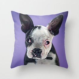 Super Pets Series 1 - Super Bugsy 2 Throw Pillow