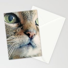 My Sweet Lilly the Cat Stationery Cards