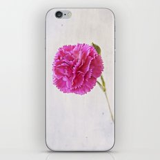 Carnation on paper iPhone & iPod Skin