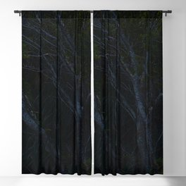 marine forest at dusk Blackout Curtain