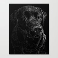 lab Canvas Prints featuring Chocolate Lab by Taylored Petraits