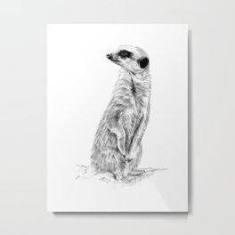 Meerkat in Charge Metal Print