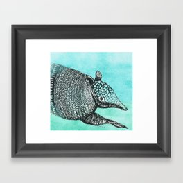 Armadillo Framed Art Print